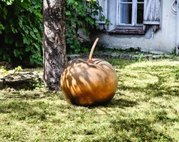 1. claude lalanne | pomme moyenne