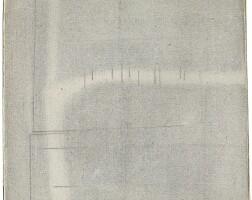 5. Bice Lazzari