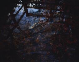 639. susan derges | red brook, 2012