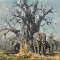 8. david shepherd | under the baobab