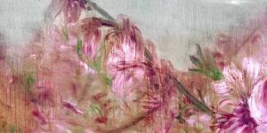 Zhou Chunya | Fragrant Peach Blossom