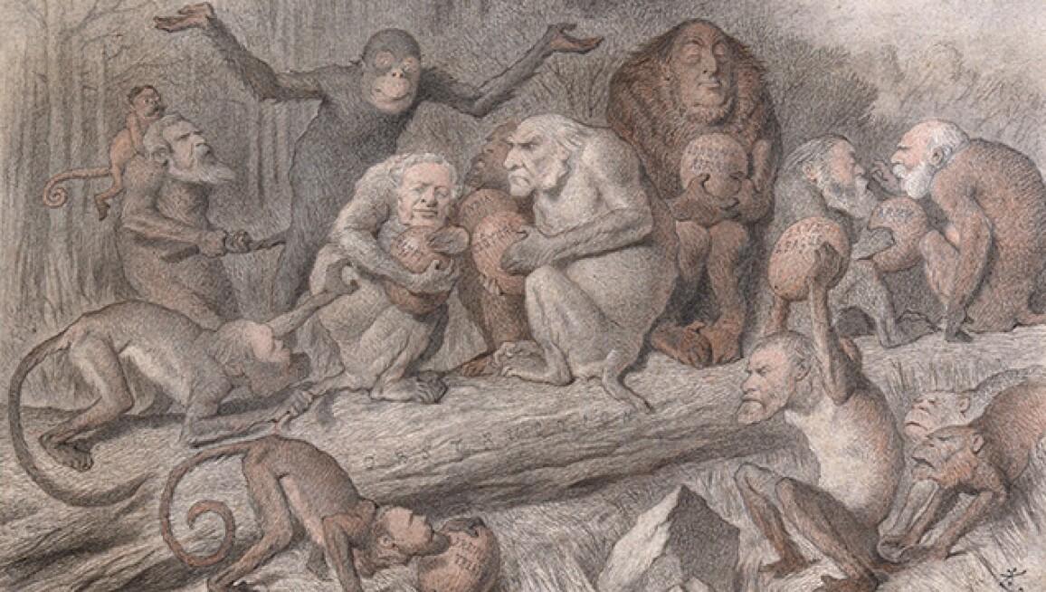 200 Years Of Political Satire In Ten Cartoons Books