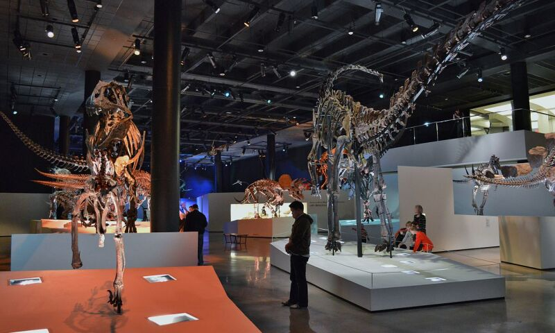 Interior of the Houston Museum of Natural Science
