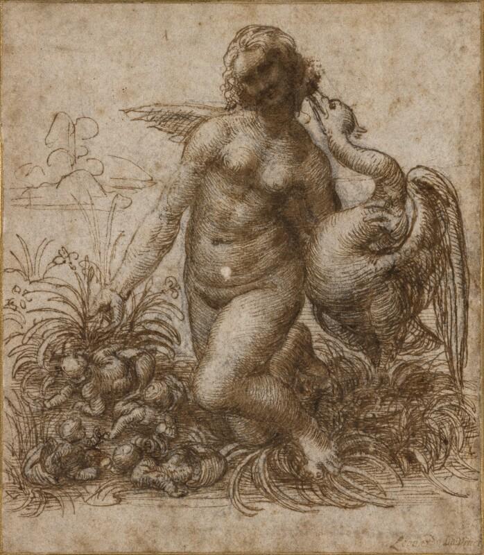 da Vinci 717.jpg