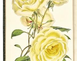 20. the floral magazine, 1861-1871, 10 vol., hand-coloured plates, contemporary green calf gilt