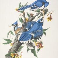 739. John James Audubon (after)