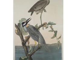 10. John James Audubon (after)