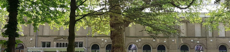 Exterior Dordrechts