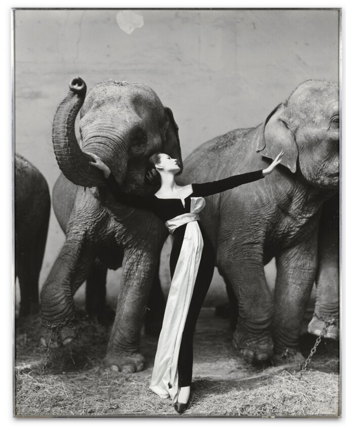 Richard Avedon, Dovima with Elephants, Evening Dress by Dior, Cirque D'hiver, Paris, 1955