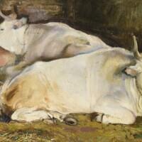 37. armando spadini | bulls