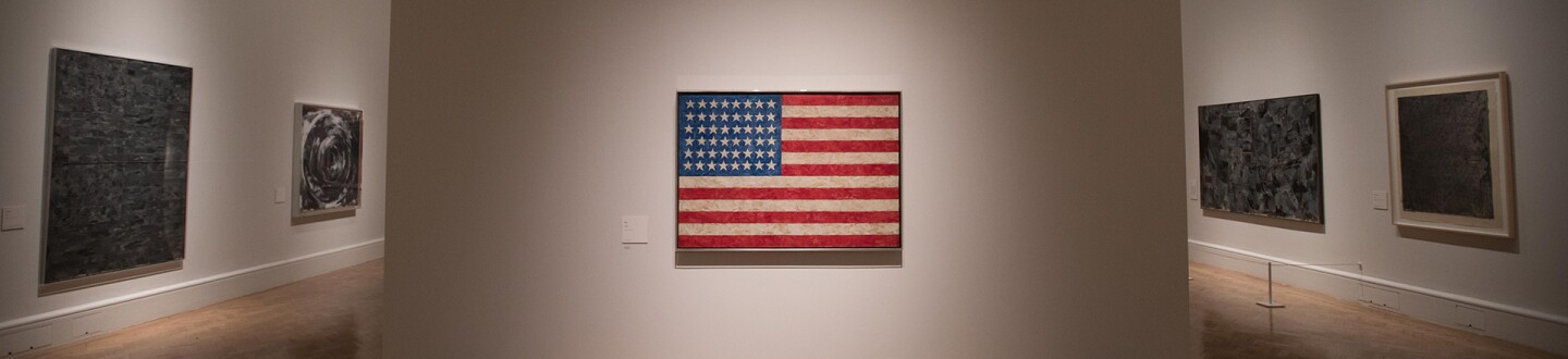 jasper-johns-installation-hero.jpg