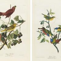 742. John James Audubon (after)