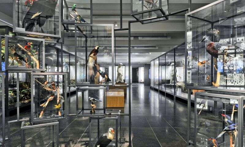 Interior view of the Museum Wiesbaden.