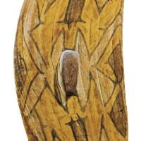 6. a rainforest shield, north east queensland, australia late 19th century