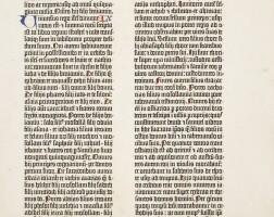 29. bible in latin