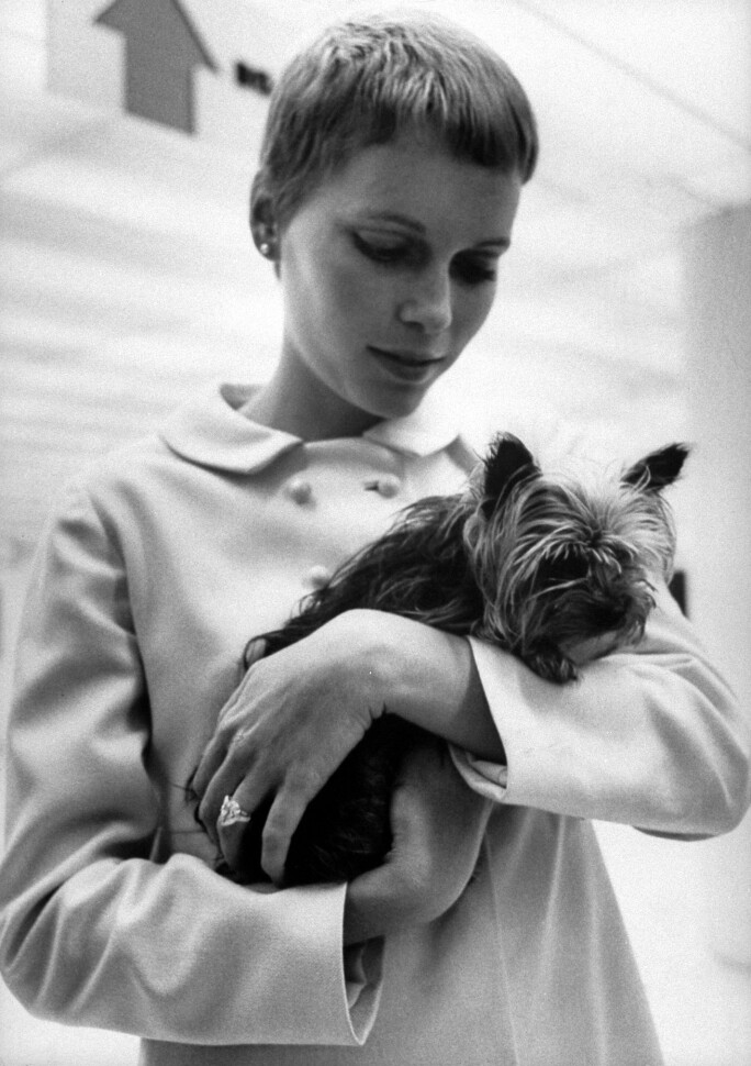 Mia Farrow with Yorkshire Terrier after announcing she will wed Frank Sinatra.