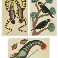 3. three kalighat paintings