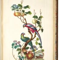 14. huquier, livre des differentes espèces d'oiseaux de la chine, [c.1745]