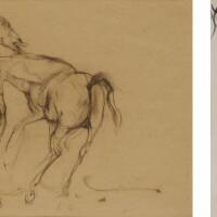 7. sunil das | untitled (horse studies)