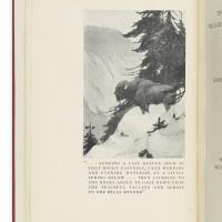 28. ellsworth, lincoln. 'the last wild buffalo hunt'. new york: privately printed, 1916