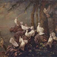 1108. 李曼峰 | 鴿子
