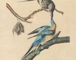 741. John James Audubon (after)