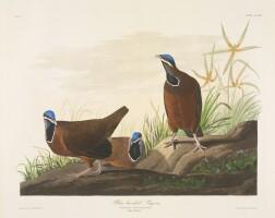 740. John James Audubon (after)