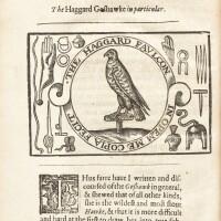 15. latham, falconry, 1633