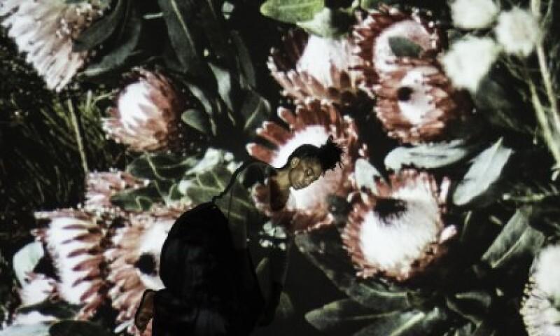 uriel_orlow_botanical_dreams_2016-2017_media_gallery_res.jpg