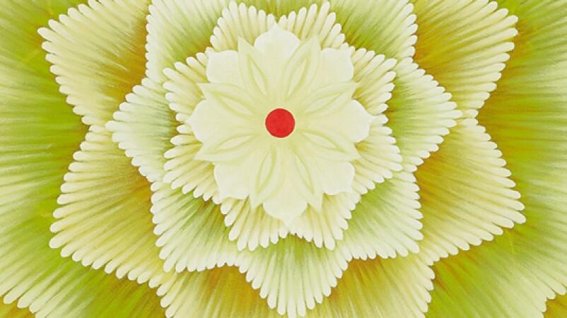 celebrationofcolour_banner_L20228.jpg
