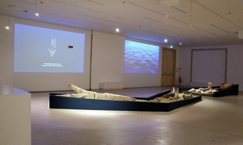 Interior view of the Museo Archeologico Nazionale di Reggio Calabria.