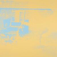 350. Andy Warhol
