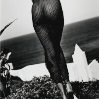 5. sante d'orazio | torso, (stephanie seymour), st. bart's, 1992