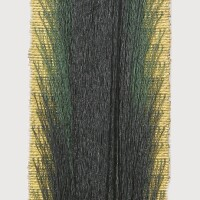 26. Olga de Amaral