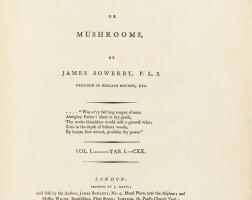 20. Sowerby, James