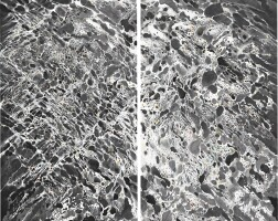 2. sky-land expression no. 5 (diptych)