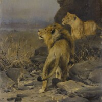 9. wilhelm kuhnert | two lions at watch