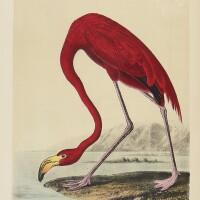 279. audubon, john james