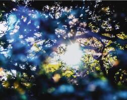 54. Yosuke Takeda