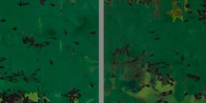 Hurvin Anderson | Maracas (double)