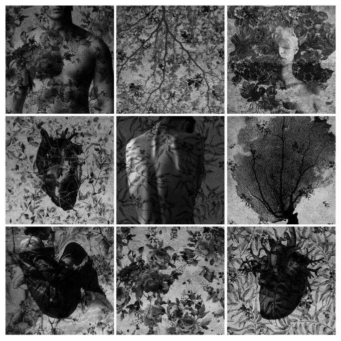 Marwa Adel, The Forest, 2018, Digital Photomontage - Inkjet print on satin Fine Art paper
