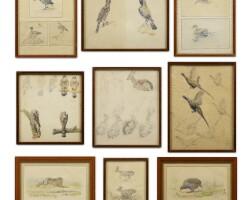 4. edouard-paul mérite | studies of birds, fawns and hares [fourteen works]