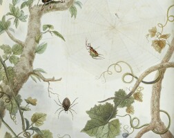 18. martyn, aranei, 1794