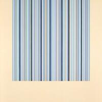 106. bridget riley | four colours, black and white - visual grey series