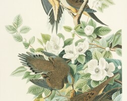 738. John James Audubon (after)