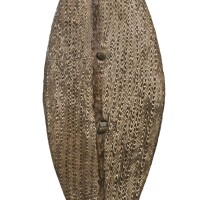 2. a broad shield, lower murray river early 19th century
