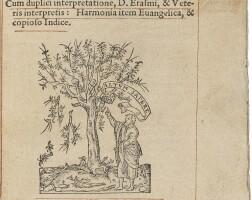 25. new testament in greek & latin