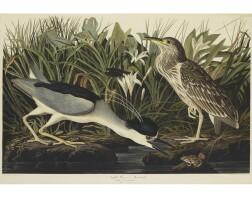 7. John James Audubon (after)