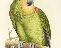10. greene, parrots in captivity. london, 3 volumes, 1884-1887, [but 1892]