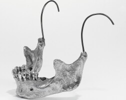 9. male jaw-piece, shaun leane